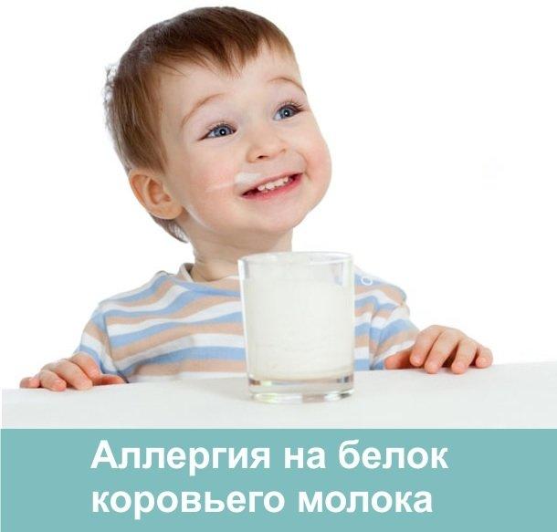 аллергия на белок коровьего молока форум