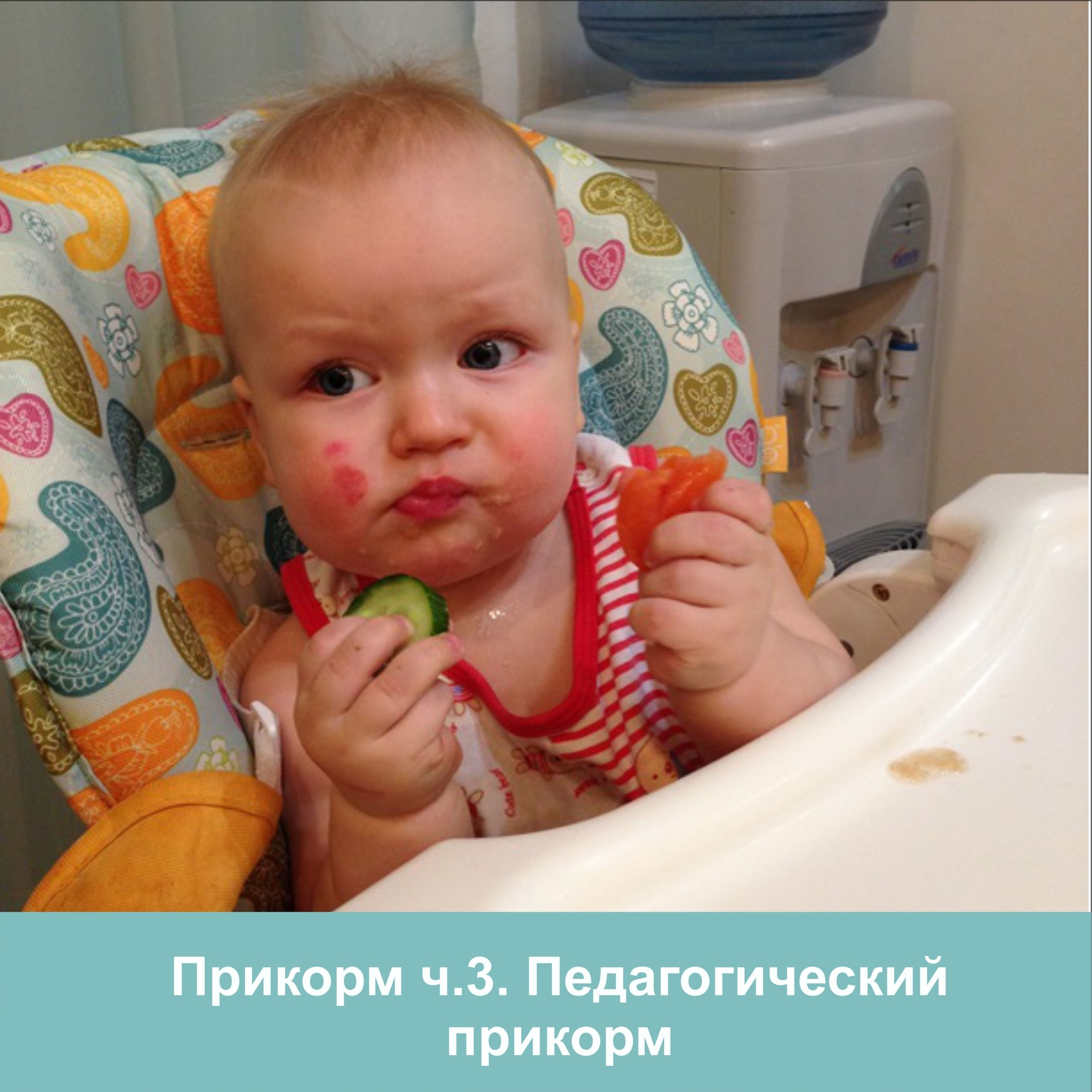 прикорм ч3