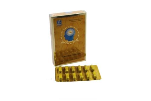 3-ganoderma-lucidum-s-les